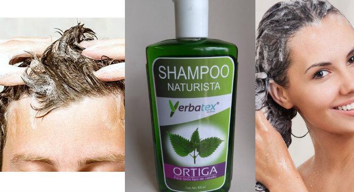 para qué sirve el champú de ortiga en el pelo