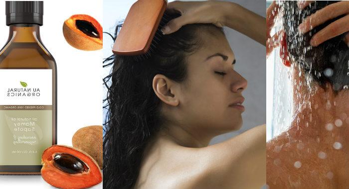 aceite de hueso de mamey para las pestañas y el cabello