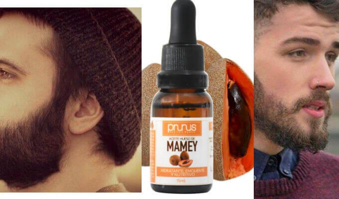 Aceite de mamey para pelo rizado